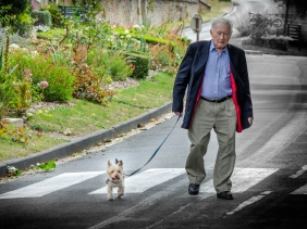 An elderly man and his dog crossing a road.